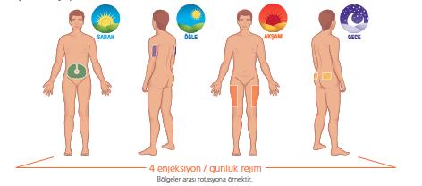 bölgeler arası rotasyon