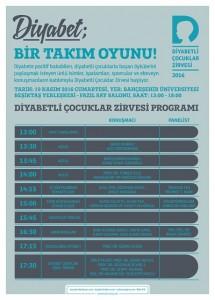 program-poster